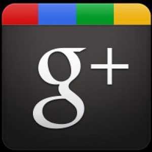 Google+, effetto apertura: 43,4 milioni di utenti