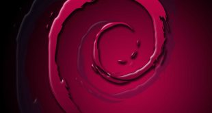 Debian è la distribuzione Linux più diffusa sui web-server