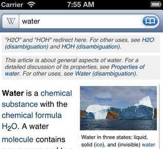 Wikipanion per iPhone