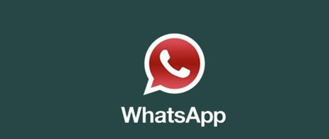 Whatsapp si blocca. Inizia male l'avventura di Zuckerberg!