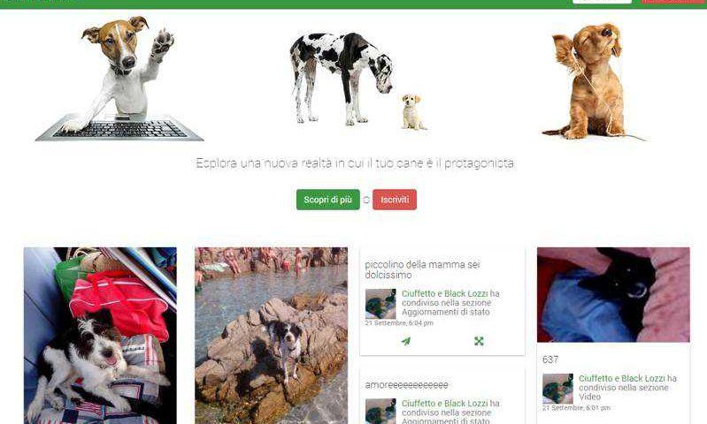 BePuppy spopola in Italia il social network per animali