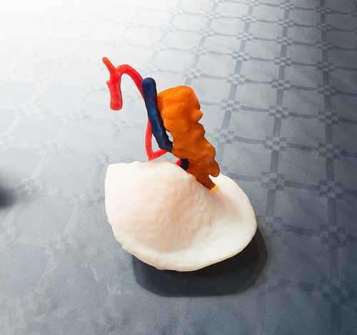 La nuova frontiera della medicina è nella stampa 3D