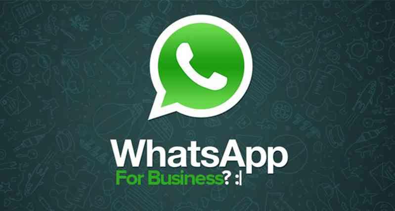 WhatsApp per le Aziende, ecco l'idea di Zuckerberg