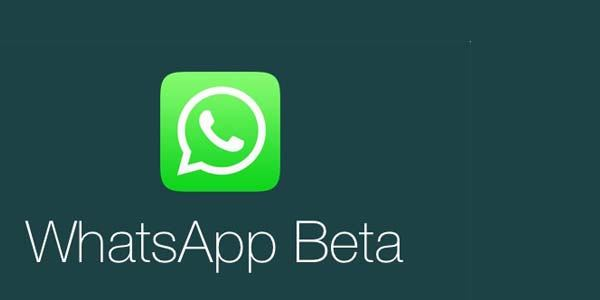 WhatsApp Beta si aggiorna su Android introducendo modifiche all'interfaccia