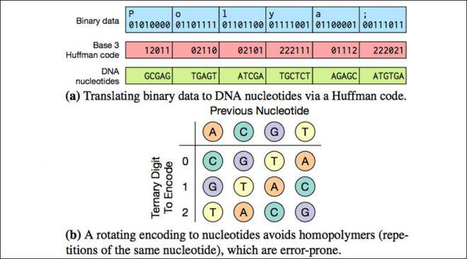 Technicolor DNA