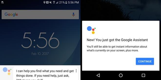App Google, versione alpha introduce Google Assistant sui non-Pixel