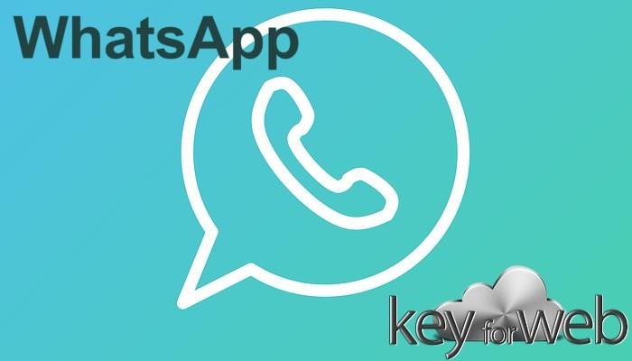 WhatsApp Beta continua ad aggiornarsi, nuovi filtri per le foto nella versione 2.17.297