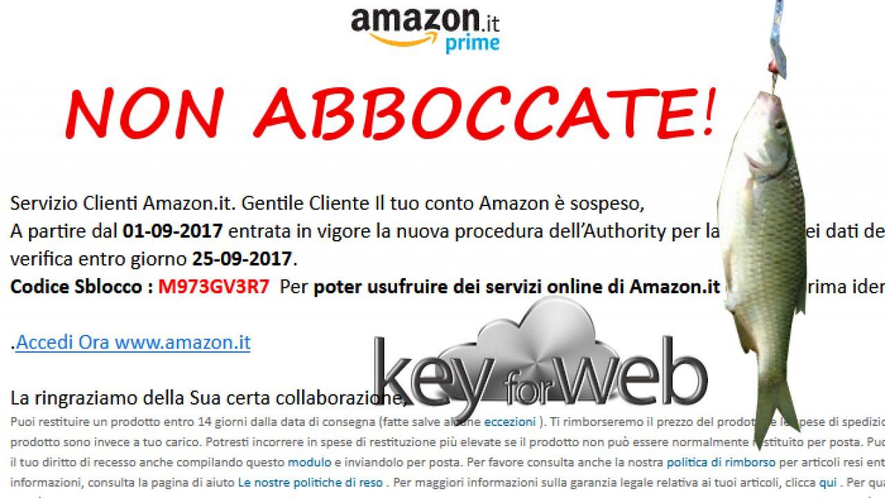 Servizio Clienti Amazon, conto bloccato, necessità di sbloccare i ...