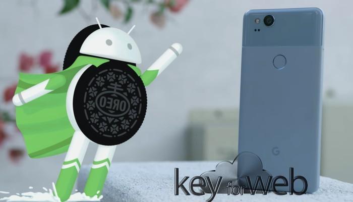 Il bug del multi-touch di Android 8.1 Oreo sarà risolto a giugno