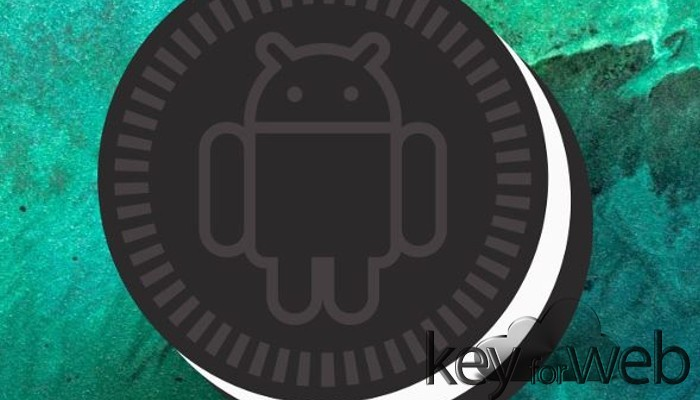 Google risolve problema d'installazione di Android 8.1 sui Pixel
