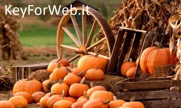 Auguri di buona festa Ognissanti il 1 novembre 2017: migliori immagini, GIF e frasi per Whatsapp