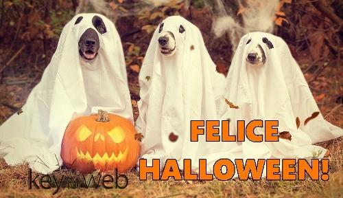 Felice Halloween immagine cagnolini