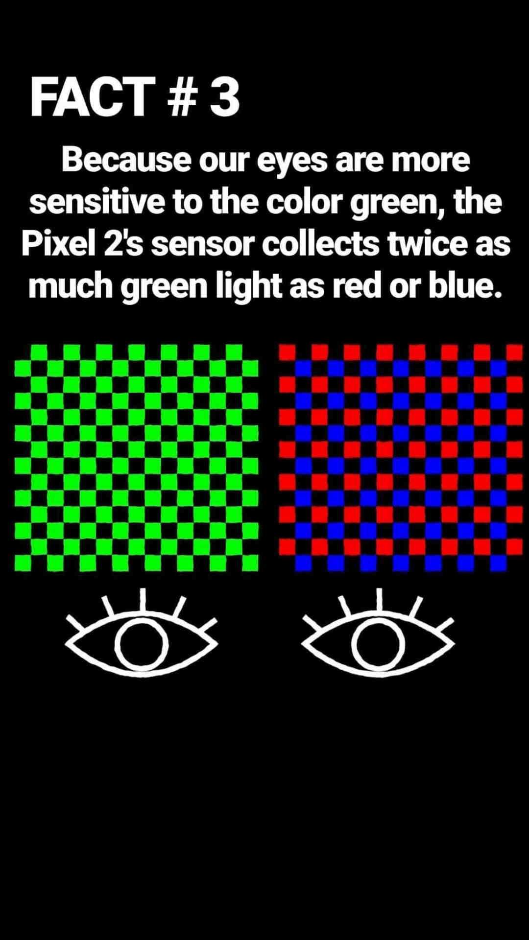 Google spiega la fotocamera di Pixel 2: ecco perché è la migliore