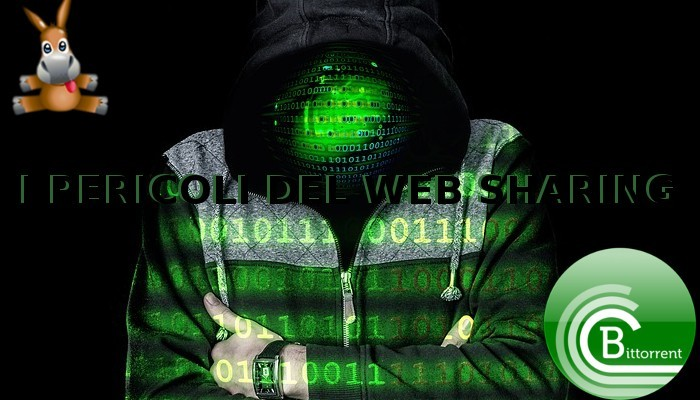 VPN e Sharing Web, acque pericolose per l'utente?