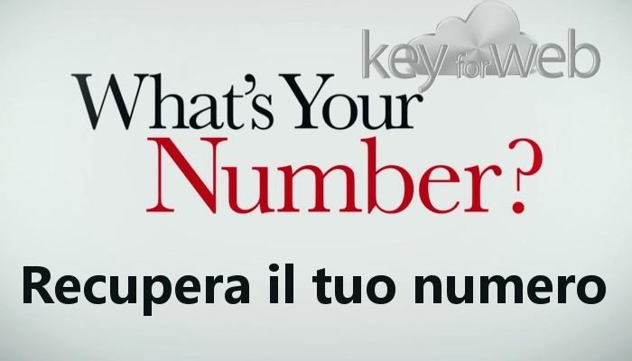 Come trovare il nostro stesso numero di telefono su Android, iOS e Windows Phone
