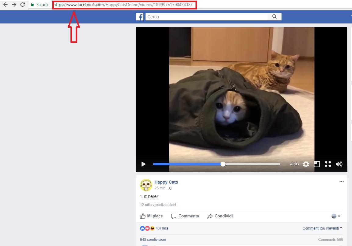 come scaricare video da facebook al pc