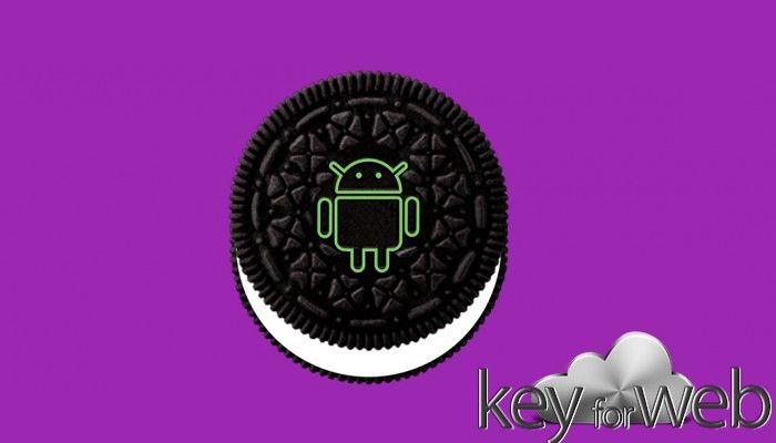 Android Oreo 8.1: l'aggiornamento compromette il multi touch