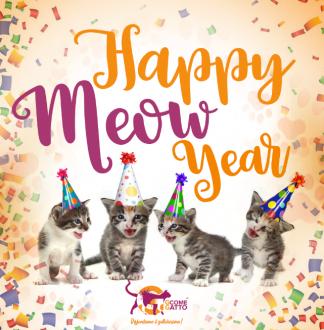 Suggerimenti per auguri di buon anno 2019 con migliori immagini, frasi, GIF e video divertenti