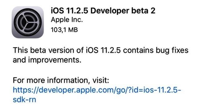 iOS 11.2.5 beta 2 disponibile per gli sviluppatori