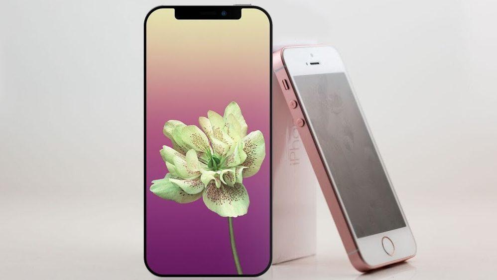 iPhone SE 2 in bozza conferma forma e materiali
