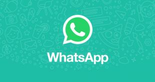 WhatsApp per iOS: arriva l'anteprima delle foto nelle notifiche