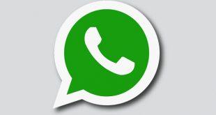 Novità WhatsApp: fra pochissimo stickers e videochiamate di gruppo
