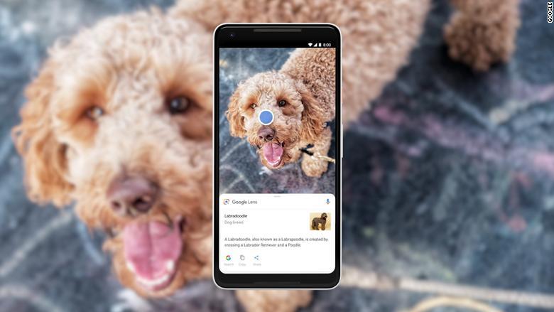 Google Foto: arrivano nuove funzionalità grazie alla AI