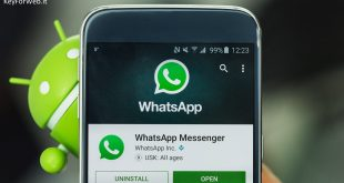 """Prossimo aggiornamento Whatsapp e nuove funzioni """"online con"""": le precisazioni"""