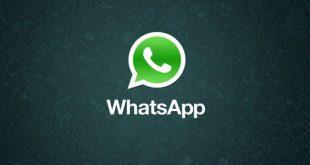 WhatsApp: finalmente sarà possibile 'silenziare gli utenti di un gruppo