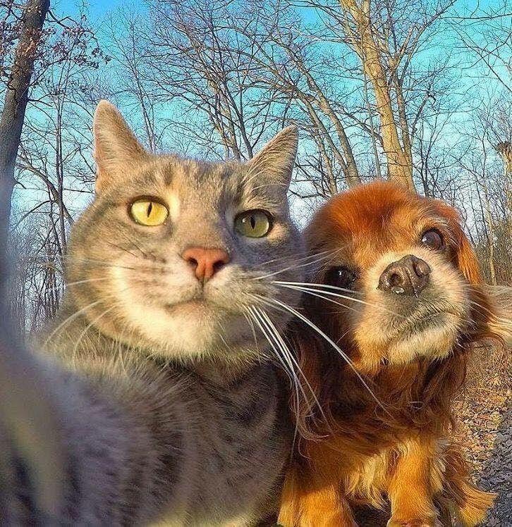 Selfie Perfetto - Giusta illuminazione