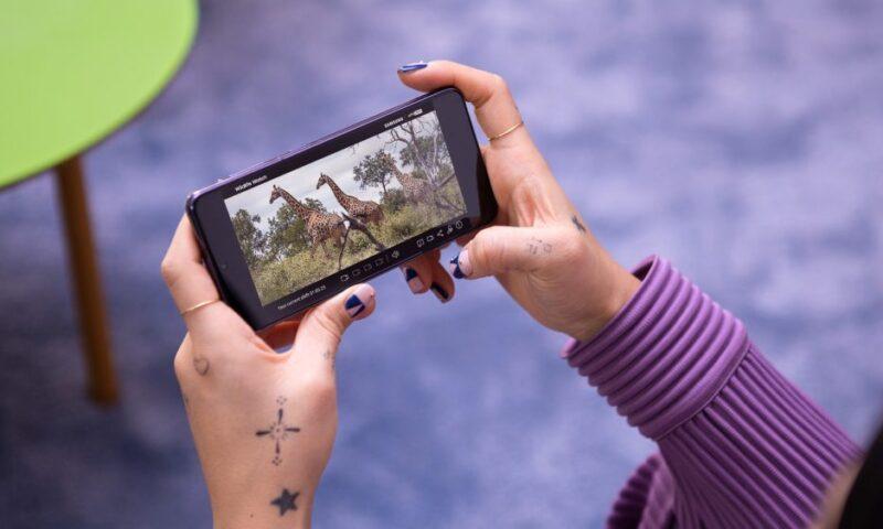Android 12 potrebbe arrivare presto sugli smartphone Samsung